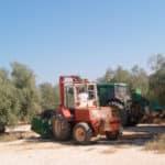 Así contribuye Atalaya Agroalimentaria a la fijación de la población rural