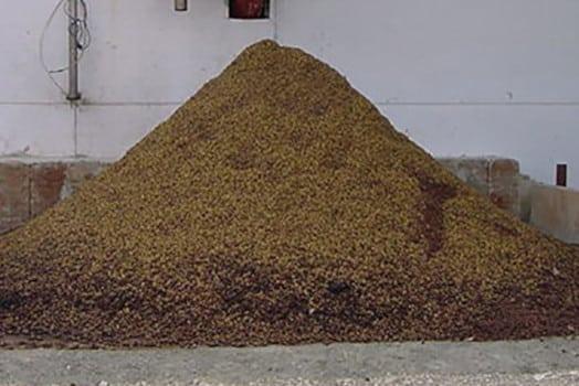 La biomasa con hueso de aceituna: qué es y cuáles son sus características