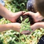 Cómo ayuda la agricultura a combatir el cambio climático